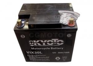 batterie YIX30L L 166mm W 126mm H 175mm
